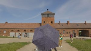 Ombrelle Birkenau